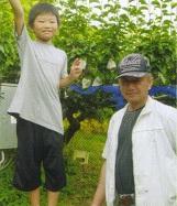 前田梨園 新高は9月28日からスタート!