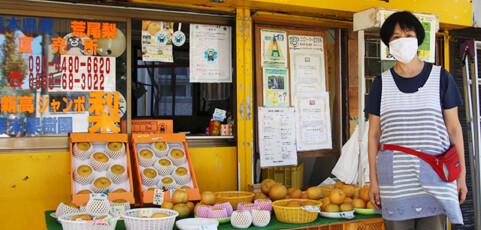 藤末果樹園さんは熊本と福岡の県境!