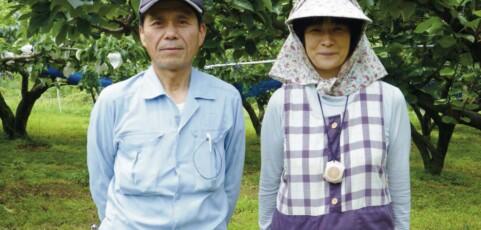 ① 藤末果樹園